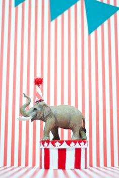 Circus themed birthday - party elephant