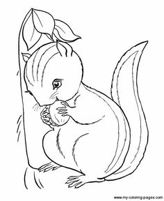 Cute Mouse Coloring Pages Free Kids Coloring Pages Pinterest