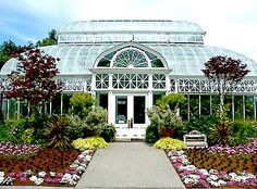 "The Volunteer Park Conservatory, Capitol Hill, Seattle. Was my ""Happy Place"" (someone said, ""Like being in an oxygen bar"") while living there."