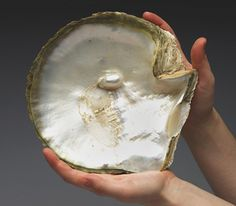 The spectacular embryonic pearl forming within this oyster shell is 3 cm long. It was presented to The Queen during her visit to the Qatar National Museum in February 1979. Before the discovery of oil in the twentieth century, pearl hunting was the main industry of Qatar. Divers would scour the ocean floor looking for oysters or other shellfish and check them individually by hand for pearls. The Royal Collection © 2010, HM Queen Elizabeth II