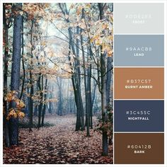 frost | lead | burnt amber | nightfall | bark