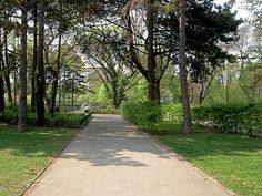 Vienna, 18th, Sidewalk, Park, Image, Walkway, Parks, Pavement