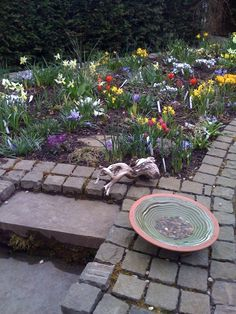 New bird bath beside raised front bed. Not sure about the red tulips among the spring colours. Will plant them elsewhere next year maybe. This bed still needs to mature quite a bit for Spring.