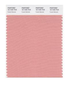 PANTONE SMART 16-1448X Color Swatch Card, Burnt Orange - Amazon.com