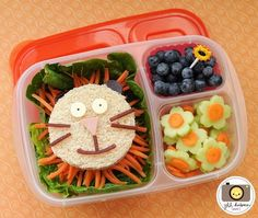 Back to School Herbies (Part 3): How to Prepare Lunches for the Week + Bento Box & Lunch Box Examples | Happy Herbivore