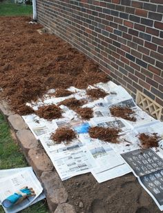 Weed prevention; hmm not sure if I believe this will work or look good...