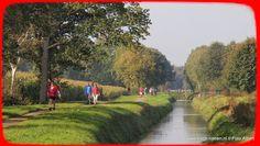 Heerenveen 5-dorpentocht 4.10.2014 - Albert Westra - Picasa Webalbums
