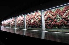 istanbul çiçeklik aydınlatması