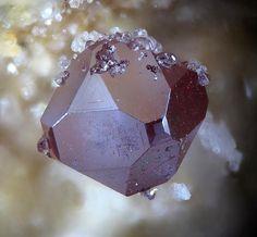 Cuprite  - Tsumeb Mine, Tsumeb, Namibia   2 mm   mw
