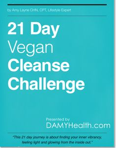 First Oprah, then Beyonce, now YOU!  Welcome to The DAMY Health 21 Day Vegan Cleanse Challenge! This is a high-raw, vegan eating challenge that comes with a full ebook containing an eating plan, recipes, guidelines, motivation as well as weekly emails.