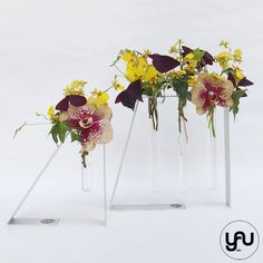 Orhidee ONCIDIUM trifoi si METAL | YaU Concept BLOG Flower Designs, Glass Vase, Floral Design, Concept, Table Decorations, Metal, Flowers, Blog, Home Decor