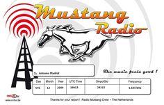 Recibida QSL, Radio Mustang,Holandes, 1910UTC,1645 Khz, en 8 días.E-Mail:mustangradio@live.nl