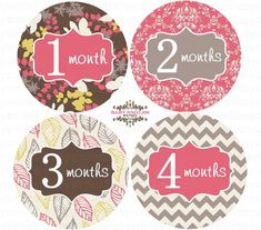 FREE GIFT Monthly Baby Stickers Baby Month by BabySmilesBoutique, $9.99