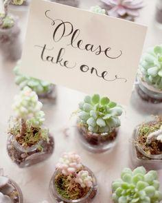 The DIY Bride's #1 resource for wholesale wedding flowers. Buy Bulk DIY flowers here! www.fabulousflorals.com #diyflowers #diywedding Fabulous Florals (@FabulousFlorals) | Twitter
