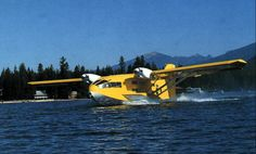 The Wilson Global  Explorer is an American-built amphibious aircraft of the early 1990s which has  been utilised to assi...