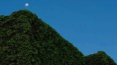 #cordobaargentina #cordoba #argentina #moon #moonlight #natgeocreative #labioguia #airelibre #happines #life #trees #ig_cordobaarg #instagood #ig_argentina #urbanism #vegan #architecture #arquitecturacordoba #archilovers #arq #arquitectura #green #verde #sustainable #sunset #moonrise #luna #lighting #light #luz by osalbang