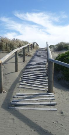 Walkway over sand dunes at New Brighton Beach, Christchurch, New Zealand