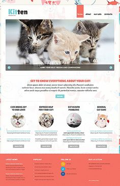 Cat Responsive Joomla Website Template #cats http://www.templatemonster.com/joomla-templates/47111.html?utm_source=PinterestM&utm_medium=timeline&utm_campaign=sbzzrr