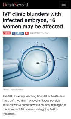 Ivf Clinic, Fertility, Amsterdam, University, Teaching, News, Health, Women, Health Care