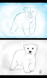 An artists lesson on drawing a polar bear cub - an endangered species because of climate change
