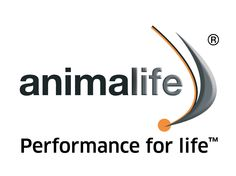 Animalife Equine Supplements
