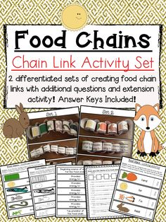 A fun activity set where students will create the order of two different food chains and show the transfer of energy. Great way to visualize the order of food chains for your students! Bring art and creativity into your science lesson by having students create paper chain links that show the order of a food chain. $ #MagnifyingTheScienceClassroom #Elementary #Science