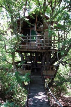 The Best Places To Sleep In A Treehouse