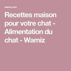 Recettes maison pour votre chat - Alimentation du chat - Wamiz Deco, Yummy Recipes, Candy Bars, Food, Kitchens, Animaux, Kitty Cats, Kitty, Deko