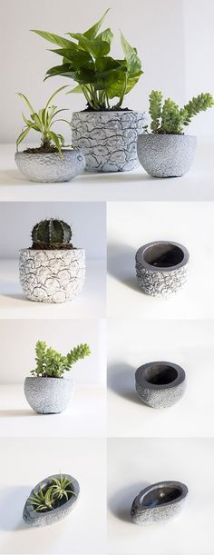 Grow Fruit In Cement Planters Molded From Fruit