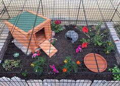 Make a tortoise enclosure in a dog crate! #DIY - PetDIYs.com