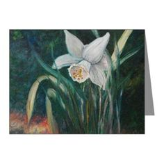 Daffodil Love Note Cards (Pk of 20)