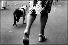 Elliott Erwitt  - New York City. 1969.