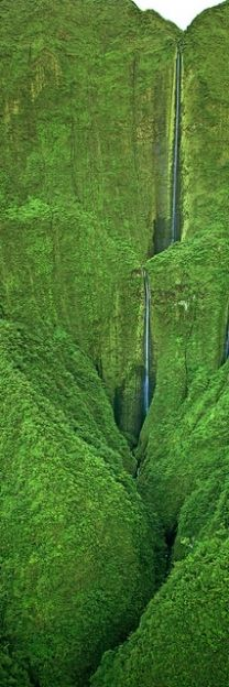 Honokohau Falls is the tallest waterfall on Maui, Hawaii, USA dropping in two tiers at a total of feet m). The best way to see this amazing cascade is by helicopter because it is located in an inaccessible valley in the West Maui Mountains. Places Around The World, Oh The Places You'll Go, Places To Travel, Mahalo Hawaii, Maui Hawaii, Hawaii Usa, Kailua Kona Hawaii, Beautiful World, Beautiful Places