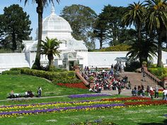 Golden Gate Park. Camped out here overnight during the Avon Breast Cancer Walk. 2005