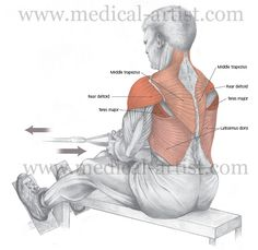 Seated cable row (aka pulley row) is a great back exercise. It's easy to break form here, so be sure to keep your head up and your back straight. Try to keep the weight on your back muscles at all times (do not pull with your arms). As you bring the weight back try to pull your shoulder blades together and flex your lats. Don't go back to far - go to a 90 degree angle, then lean forward, pivoting at the hips. Think of your arms as hooks to hold the weight. Make your back do the work.
