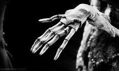 Corpse Bride (2005) Johnny Depp Dead, Johnny Depp Movies, Corpse Bride Art, Tim Burton Corpse Bride, Stop Motion, Fanfiction, Estilo Tim Burton, Dead Bride, Paranormal Stories