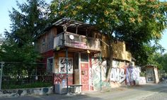 Germany's first guerrilla gardener  When a little bit of East Berlin got left on the wrong side of the Berlin Wall, Osman Kalin built a home on it from scraps of rubbish, and cultivated flowers and vegetables