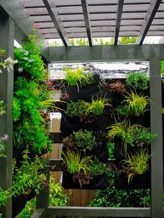 29 most amazing living wall and vertical garden ideas 8 ~ Beautiful House Lovers Backyard Trampoline, Backyard Privacy, Outdoor Privacy, Porch Privacy, Privacy Fences, Pergola Patio, Modern Garden Design, Patio Plants, Vegetable Garden Design