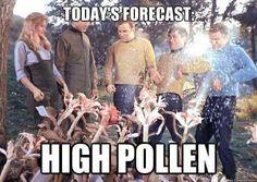 Today's Forecast, High Pollen, weather, allergy season, sneezing, congestion, Star Trek, the original series, ST:TOS, Kirk, McCoy, Spock, Sulu, landing party, meme, funny, humor, plants, spores, episode, health, allergic reaction