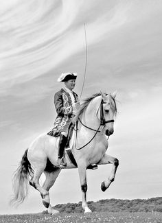 Riding Master Frank Grelo. http://www.annabelchaffer.com/categories/Equestrian-Gifts/