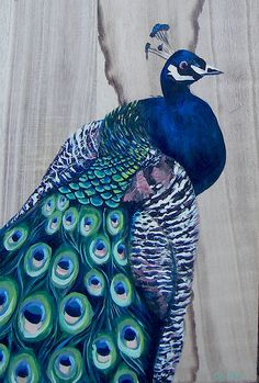 My Paisley World: The Art of … Peacocks. Curated art from Etsy! http://mypaisleyworld.blogspot.com/