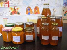 succo e composta di albicocche homemade