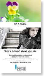 The Backbone Zone poster by Maine Coalition Against Sexual Assault (MECASA) (USA, 2013).