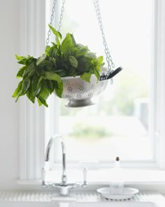 Colander Hanging Basket: Great recipes and more at http://www.sweetpaulmag.com !! @Sweet Paul Magazine