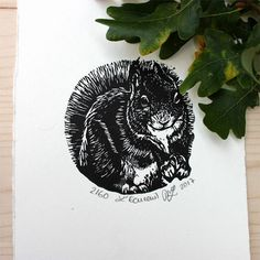 L'écureuil gravure sur bois originale série les