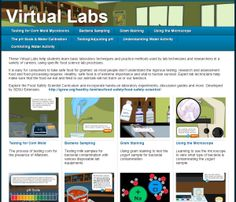 Virtual Labs for Foo