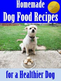 Homemade Dog Food Recipes for a Healthie...
