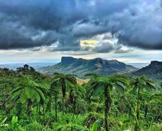 Koroyanitu National Park, in Main island, nearby Nadi