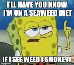 I'm on a seaweed diet