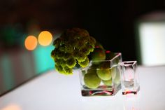 glass cubes filled with limes. green yoko ono buttons perched on the side. Wedding Centerpieces, Wedding Table, Yoko Ono, Glass Cube, Limes, Event Ideas, Tablescapes, Buttons, Table Decorations